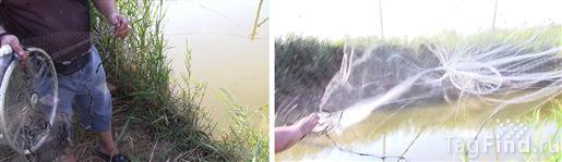 рыболовная сеть азов снасти